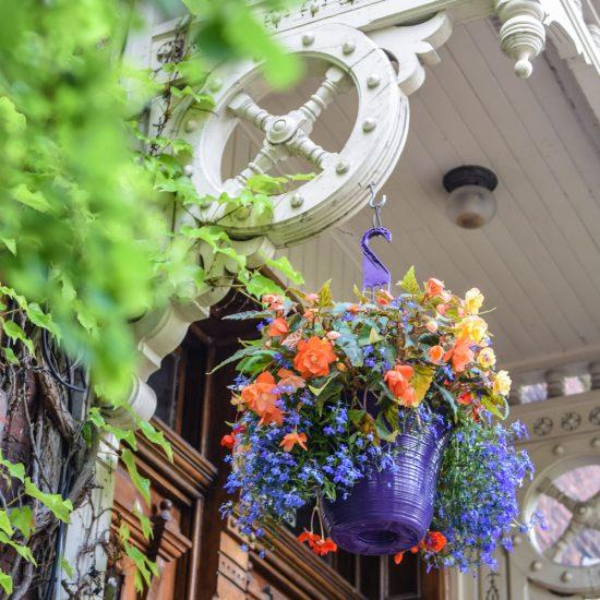 Détails floral rue Drolet