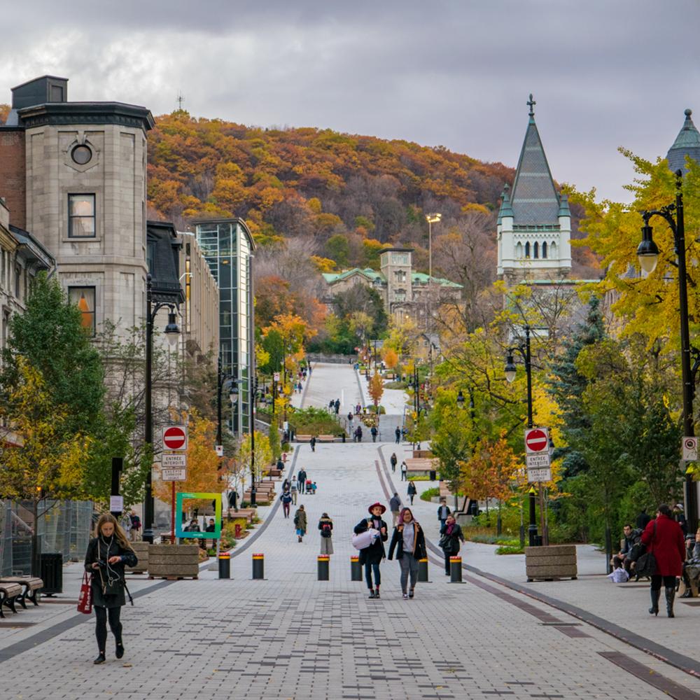 Université de McGill photowalk montréal